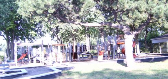 Pine Playlot Park