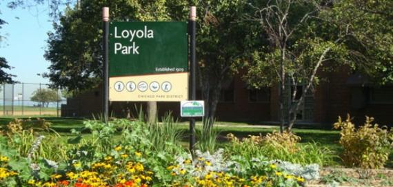 Welcome to Loyola Park!