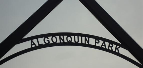 Algonquin Park Signage