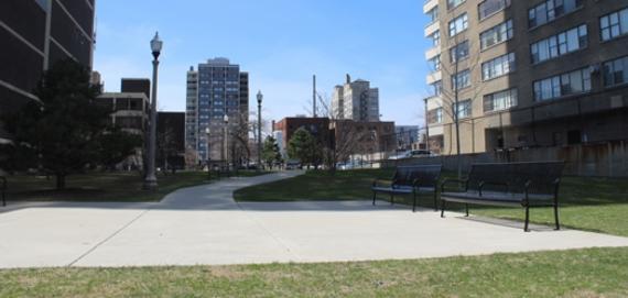 Park No. 559 view!