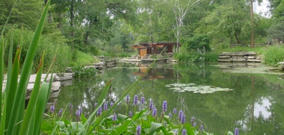 Beautiful Alfred Caldwell Lily Pool