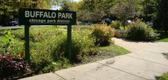 Sunny days at  Buffalo Playlot Park