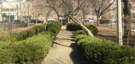 Walking path through South Lakeview Park.