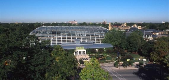 Garfield Park Conservatory Wedding.Garfield Park Conservatory Chicago Park District
