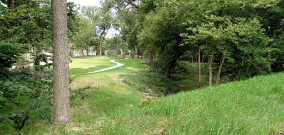 Lush green at West Ridge Nature Park