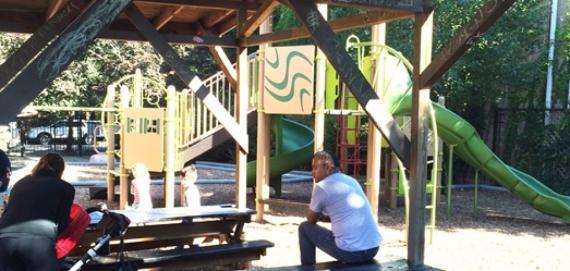 Bertha Honoré Palmer Park Playground