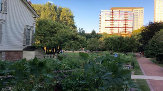 Chicago Women 39 S Park And Garden Community Garden Chicago Park District