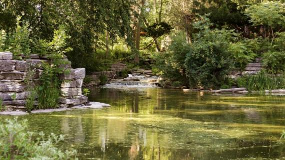 Eugene Field Natural Area