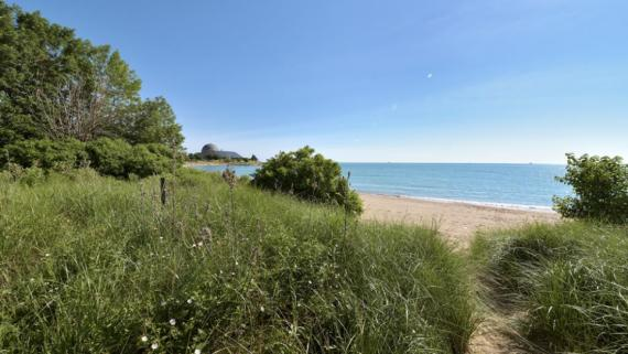 Northerly Island 12th Street Beach Natural Area