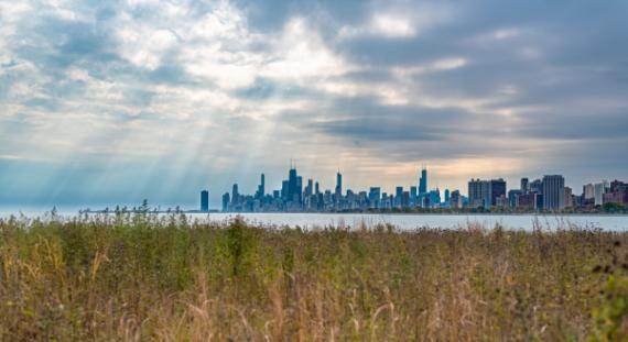 View of Chicago skyline from the Montrose natural area.
