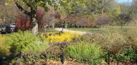 Margate Park - Landscaping