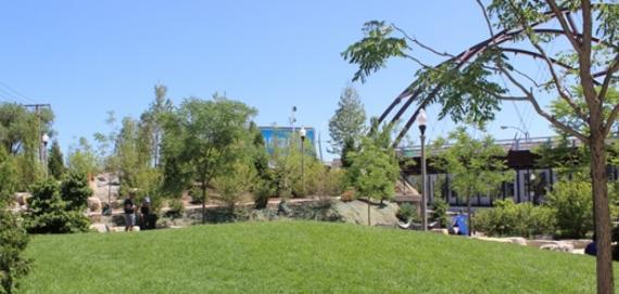 Park 567 grassy area.