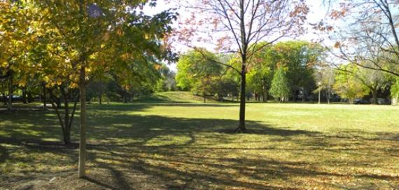 Stout Park