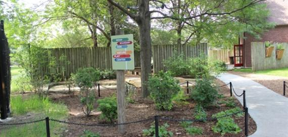 Check out the new nature play area!