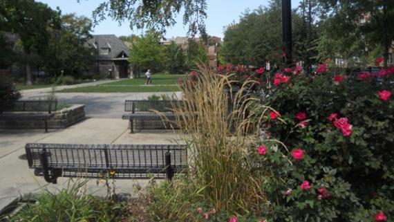 Unity Park Community Garden