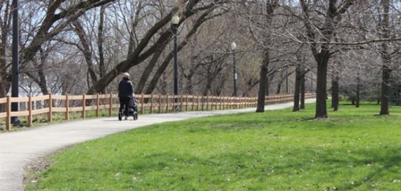 Beautiful day for a stroll in the park