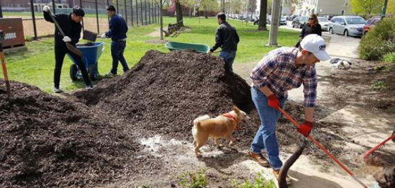 Community gardening at Eckhart