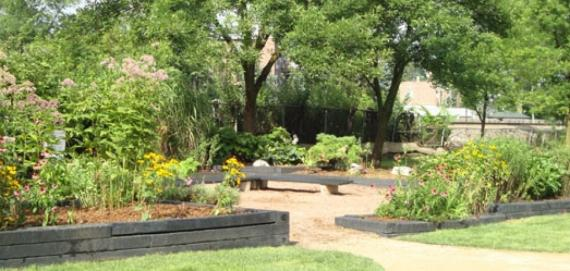 Community garden at Rutherford Sayre Park.