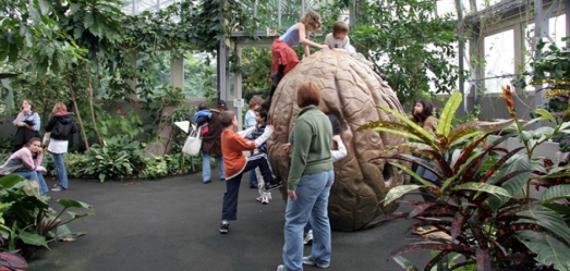 Elizabeth Morse Genius Children's Garden