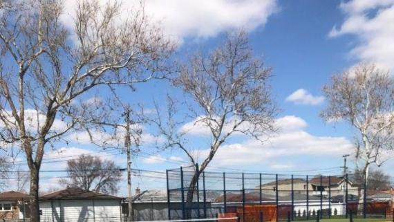 Rainey Park Tennis Courts