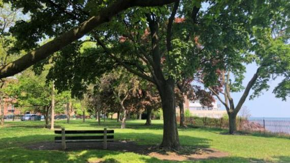 Green space at Rogers Beach Park