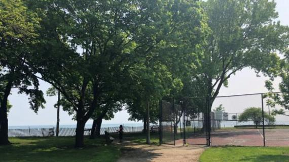 Tennis Courts at Rogers Beach Park