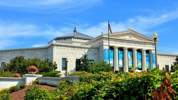 Outside view of the Shedd Aquarium